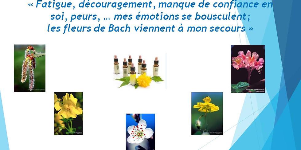 Fatigue et découragement....les fleurs de Bach viennent à mon secours!