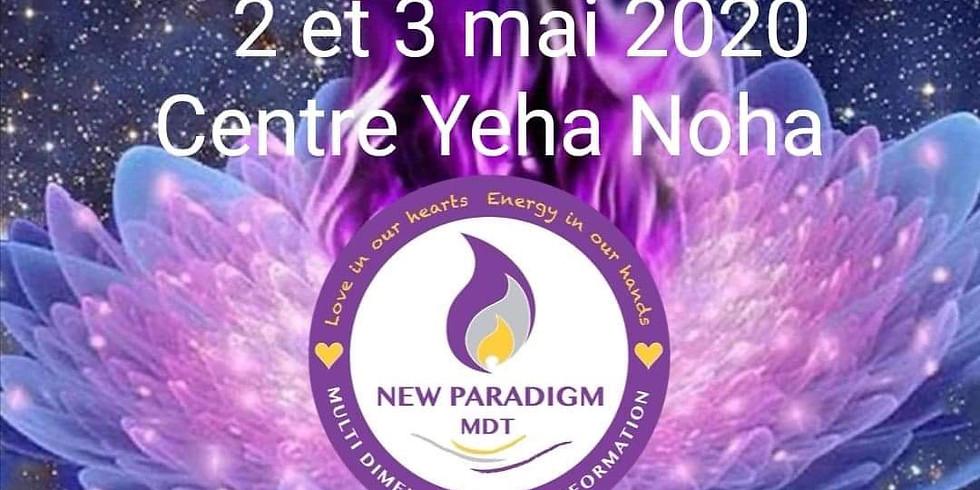 Formation en Shamballa New Paradigm Basic