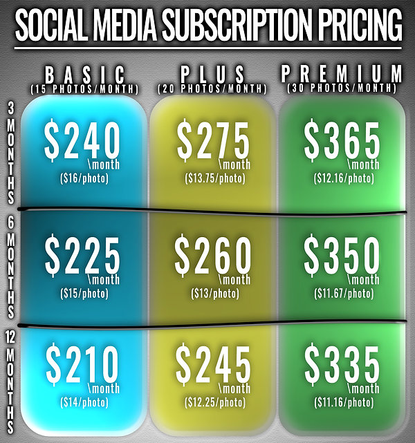 Subscription Pricing Table.jpg