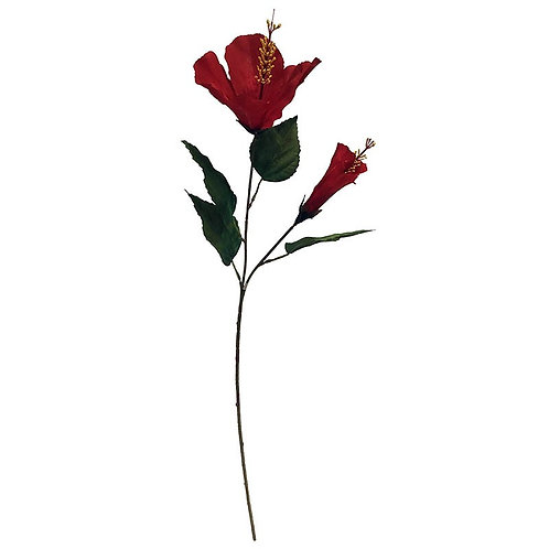 Hibiskus på stilk, rød / Hibiscus flower on stem, red