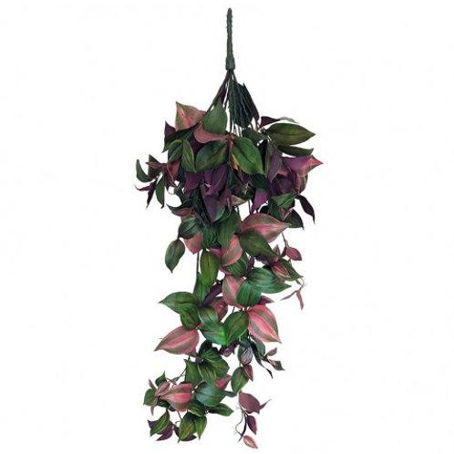 Hængende plante grøn & lilla, stor / hanging plant green & purple, large