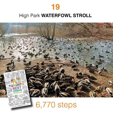 WALK #19 High Park WATERFOWL STROLL by N