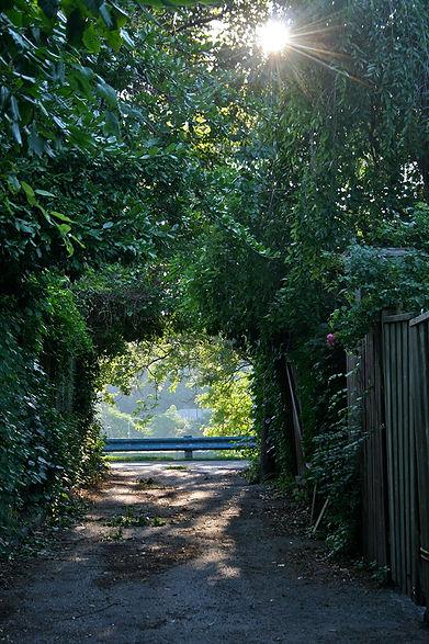 Walk 12 Cabbagetown Victorian Stroll 3.j