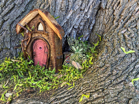 The enchanted little nooks of East Danforth (Fairy doors PART 2)