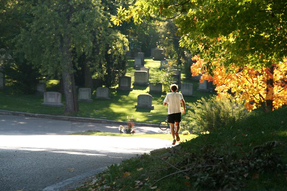 Walk 15 Mount Pleasant Cemetery Stroll 1