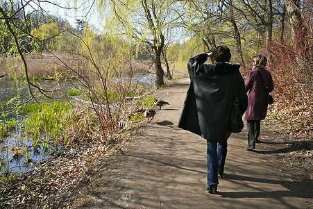 Walk 19 High Park Waterfowl Stroll 10 in