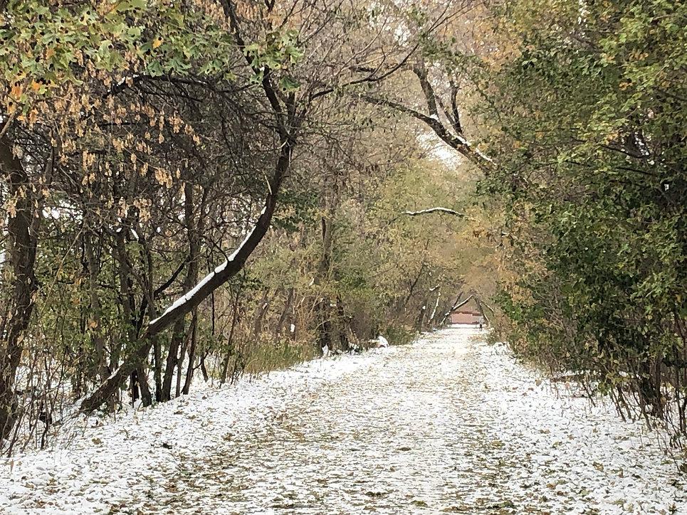 Walk 17 Forest Hill Beltline Stroll 3 in