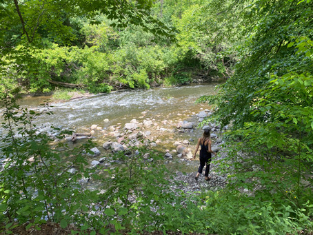 Highland Creek, the overlooked river!
