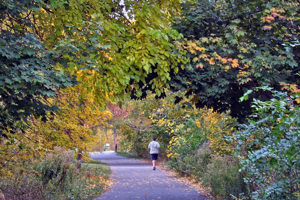 Walk_17_Forest_Hill_BELTLINE_STROLL_in_T