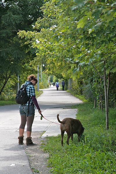Walk 18 West Toronto Railpath Stroll 1