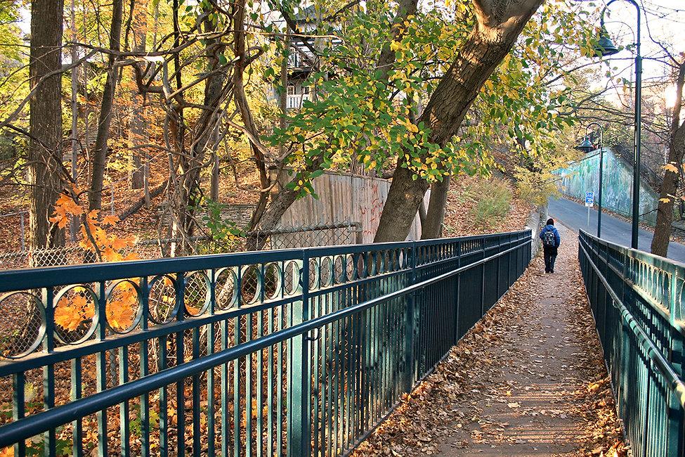 Walk 14 Rosedale Meandering Stroll 9.jpg