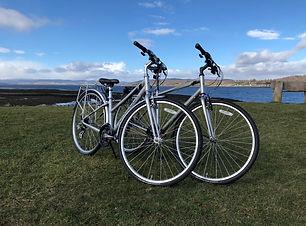 Rental Bikes.jpg
