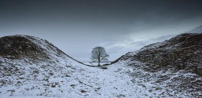Winter Sycamore Gap