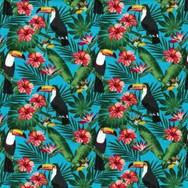 Tropical Toucans