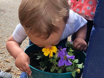STOP & smell the flowers!