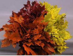 Oak Leaves Fall Pack