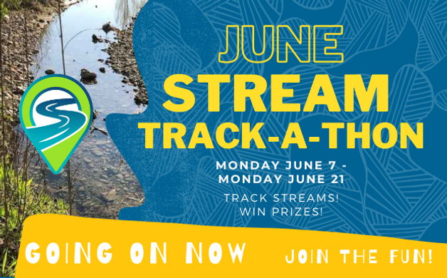 Copy of June Stream track-a-thon.png