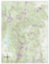 ARNF_trails.jpg