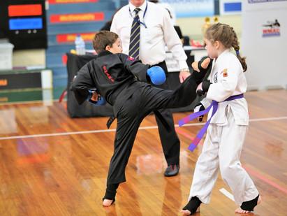2017 Kumiai Ryu Martial Arts Nationals