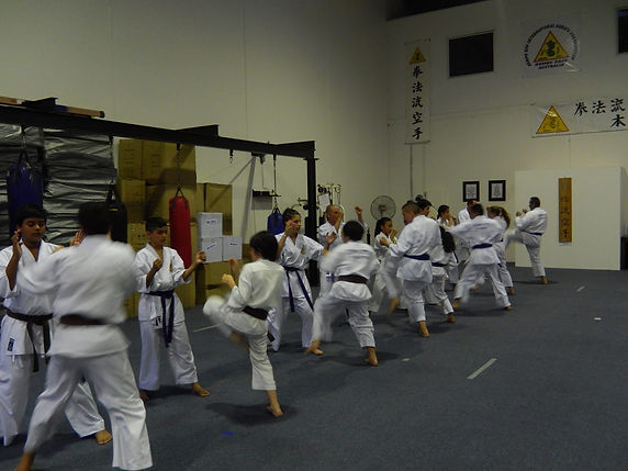 Wht is Kempo Ryu Karate
