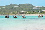 horseback riding in turks and caicos isl