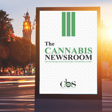 cannabis newsroom digital out of home