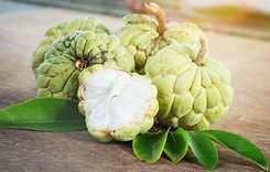 custard-apple-cover-1.jpg