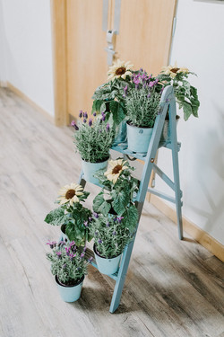 Step ladder with sunflowers
