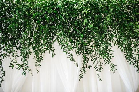 Green curtain wedding backdrop