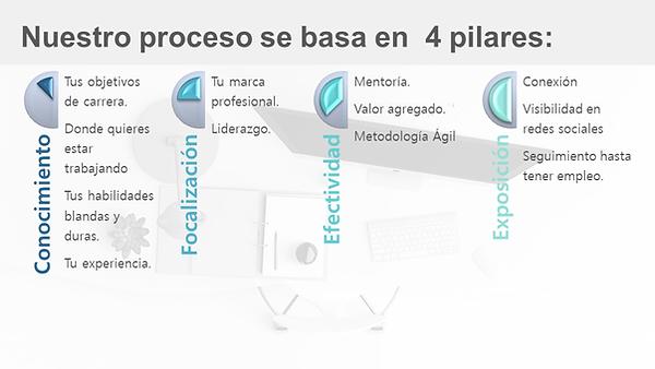 Basic platform 2020.png
