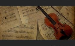 Violinista para evento