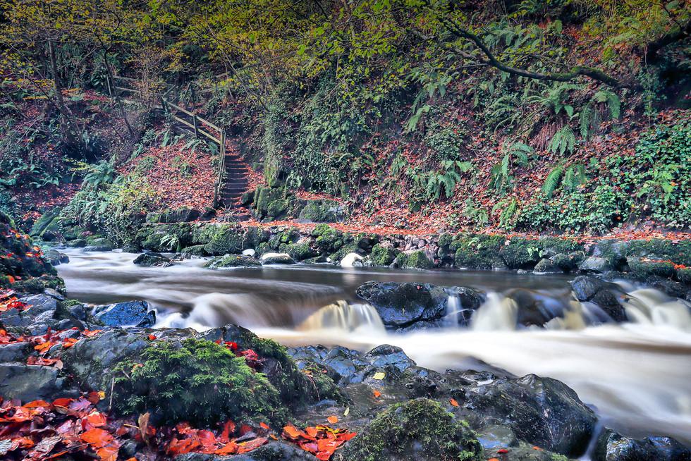 PDI - Autumn Flow by Derek Kane (8 marks)