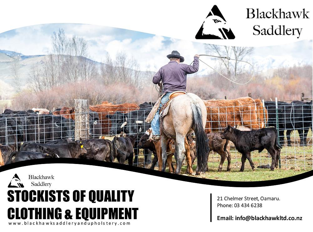 Blackhawk Saddlery New Zealand