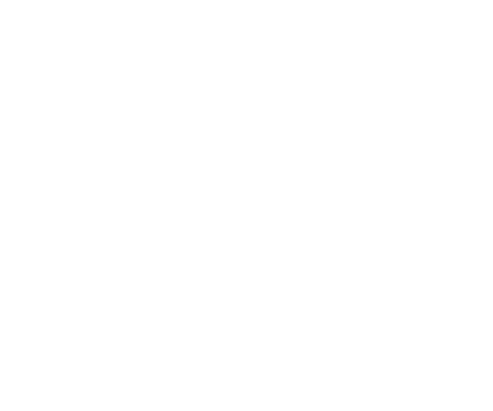 TheWildOnes.png