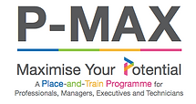 p-max programme grant subsidy singapore