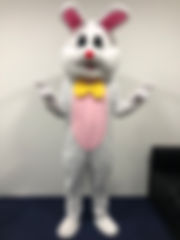 Singapore Yu Tu Rabbit Bunny Mascot Rental