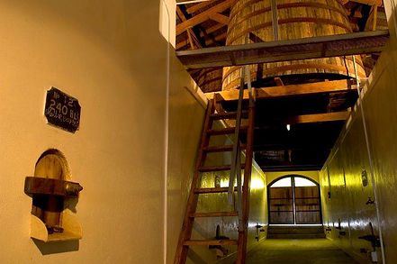 Bodega Cabrini - Cabrini Wines.
