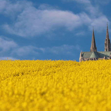 Le Graal & la Cathédrale de Chartres