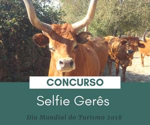 """Concurso """"SELFIE GERÊS"""" para celebrar o Dia Mundial do Turismo   Peneda Gerês TV"""
