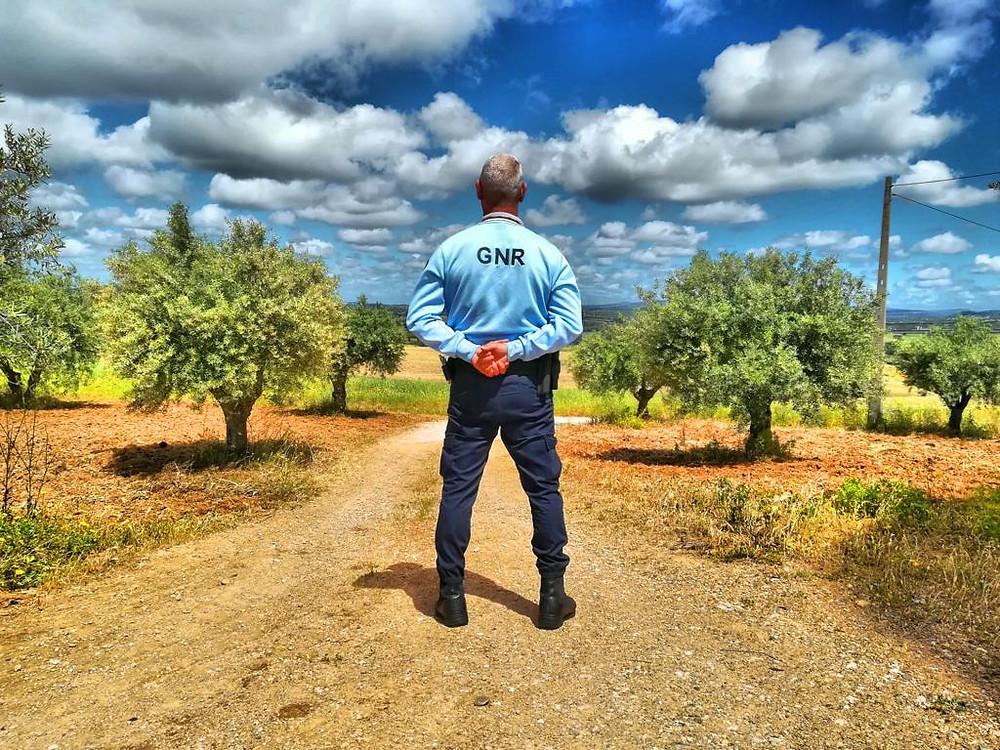 A partir do dia 1 de junho e até ao dia 31 de dezembro, a Guarda Nacional Republicana (GNR) vai intensificar o patrulhamento nas explorações agrícolas, em todo o território