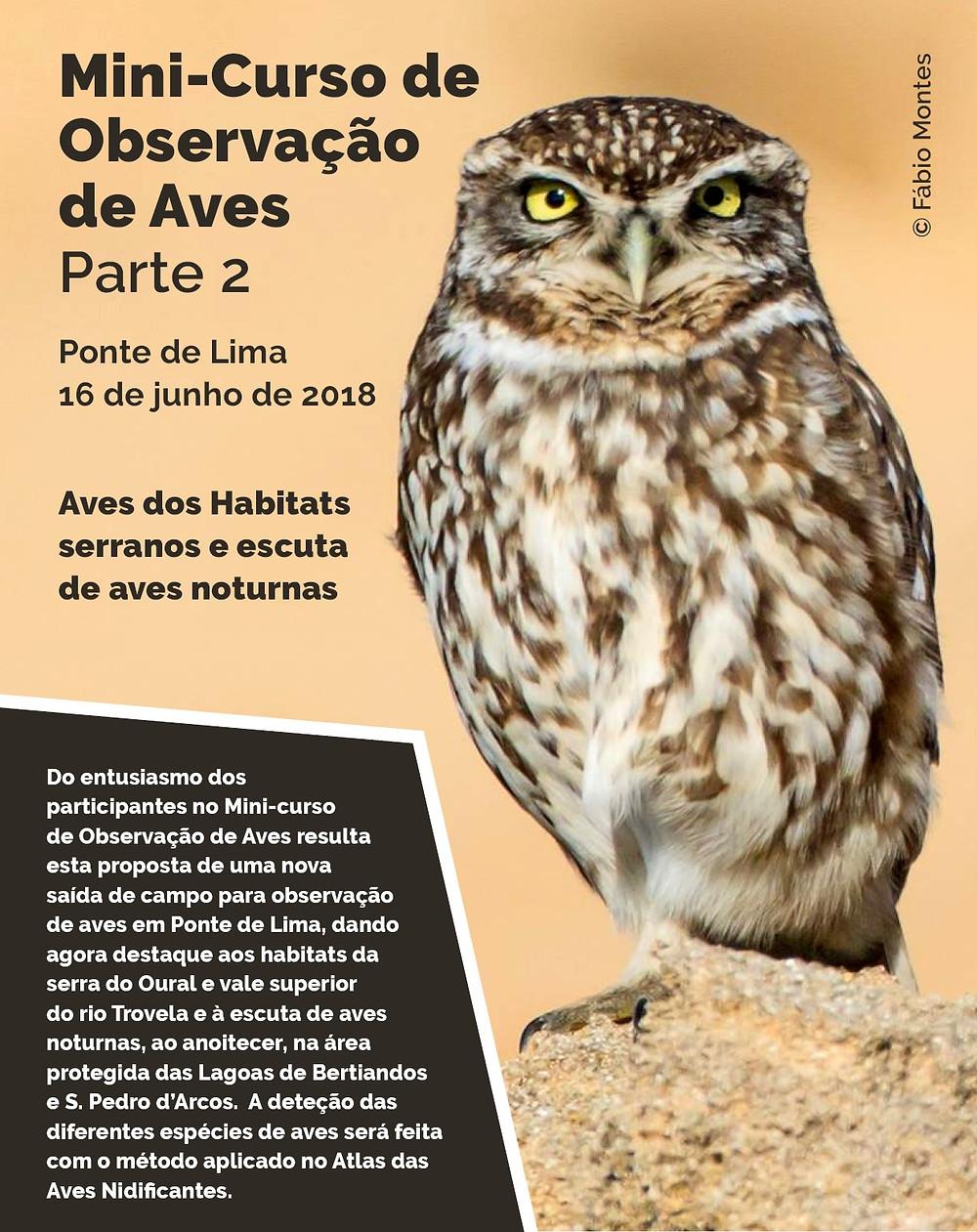 Minicurso de Observação de Aves – Parte 2 - 16 de junho, em Ponte de Lima   Peneda Gerês TV