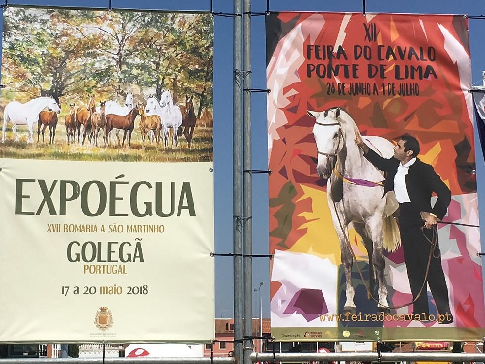 Município de Ponte de Lima – Destino Equestre Internacional na ExpoÉgua   Peneda Gerês TV