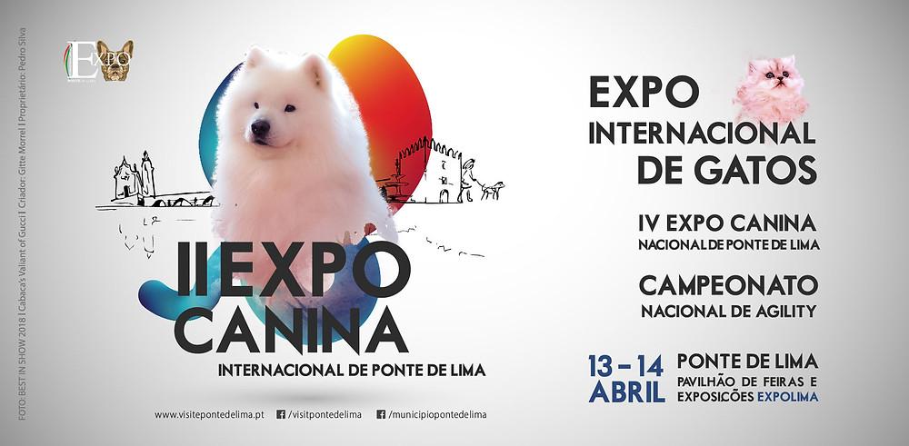 II Expo Canina Internacional de Ponte de Lima | Peneda Gerês TV