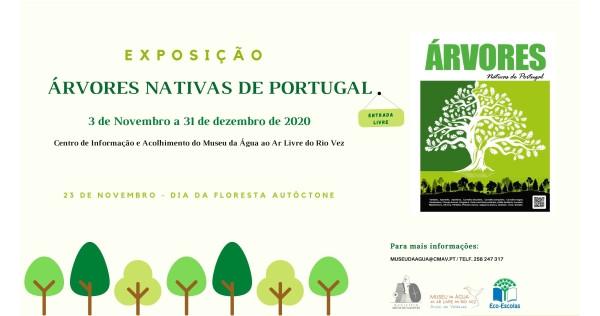 """Exposição """"Árvores Nativas de Portugal"""" patente no Centro de Informação e Acolhimento do Museu da Água ao Ar Livre do Rio Vez até 31 de dezembro"""
