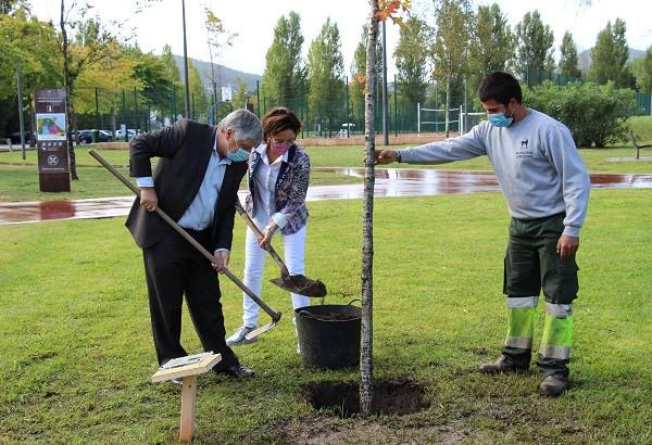 Para assinalar a Semana da Cooperação Europeia, os autarcas da Eurocidade Cerveira-Tomiño protagonizaram, nesta manhã de sexta-feira, um ato simbólico de plantação da 'Árvore da Amizade' em pleno Parque de Lazer do Castelinho.