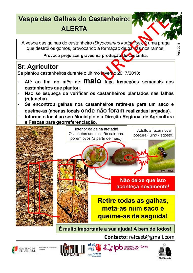 luta biológica contra a Vespa-das-galhas-do-castanheiro | Peneda Gerês TV