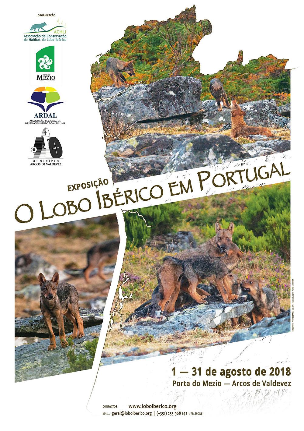Exposição O Lobo Ibérico em Portugal   Peneda Gerês TV