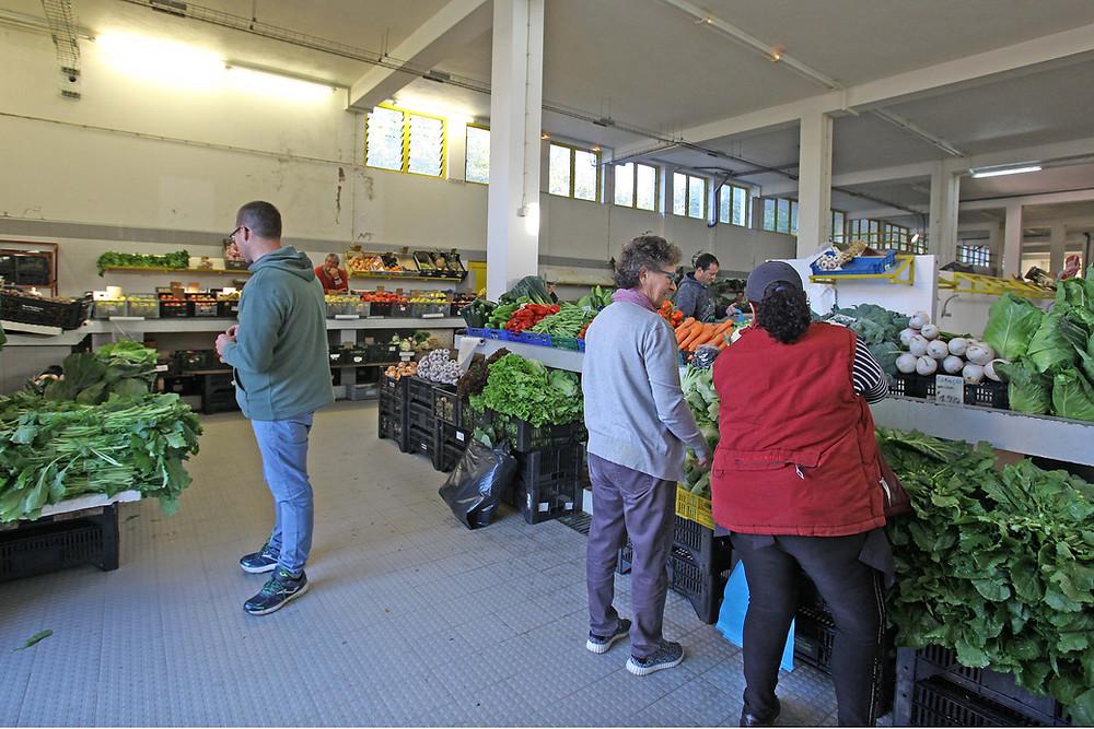Melgaço disponibiliza espaços gratuitos para produtores agrícolas | Peneda Gerês TV