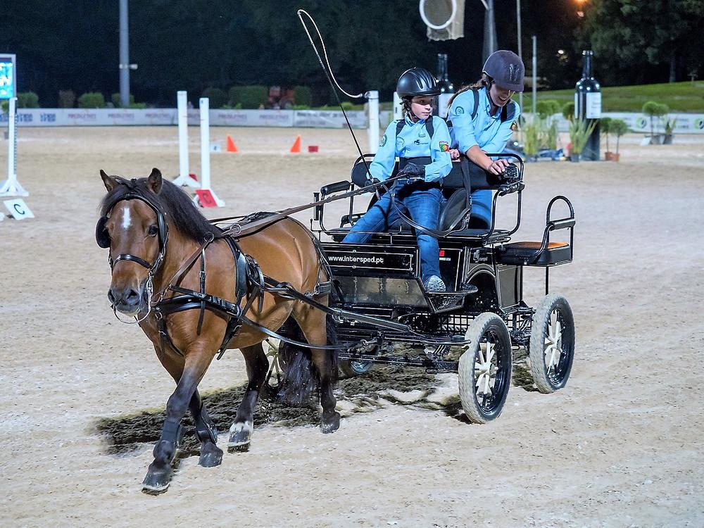II Jogos Equestres | Pente de Lima | Peneda Gerês TV