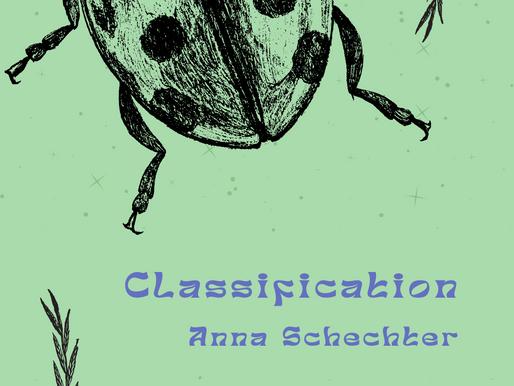 Anna Schechter - Classification